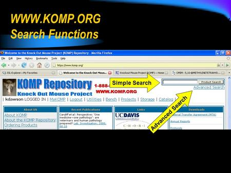 WWW.KOMP.ORG Search Functions Simple Search Advanced Search.