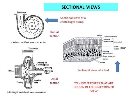 Sectional view of a centrifugal pump Radial section Axial section Sectional view of a leaf SECTIONAL VIEWS TO VIEW FEATURES THAT ARE HIDDEN IN AN UN-SECTIONED.