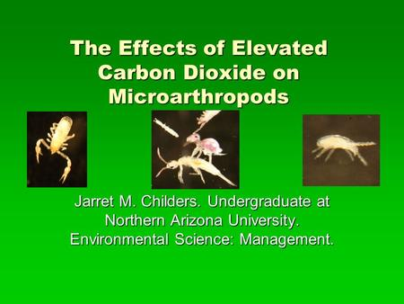 The Effects of Elevated Carbon Dioxide on Microarthropods Jarret M. Childers. Undergraduate at Northern Arizona University. Environmental Science: Management.