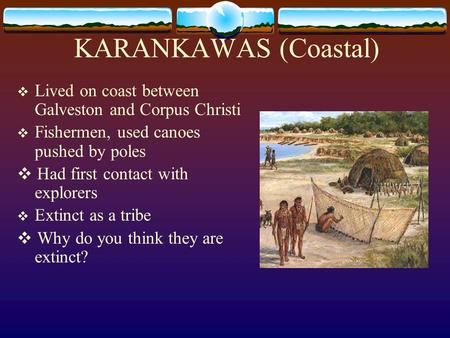 KARANKAWAS (Coastal) ❖ Lived on coast between Galveston and Corpus Christi ❖ Fishermen, used canoes pushed by poles ❖ Had first contact with explorers.