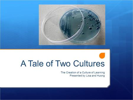 A Tale of Two Cultures The Creation of a Culture of Learning Presented by Lisa and Huong.