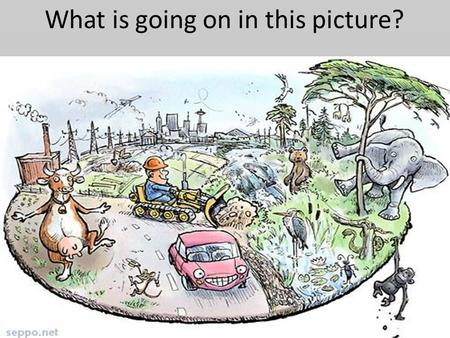 What is going on in this picture?. Human's Adapting to their Environment (Humans using the resources in the immediate area to survive)