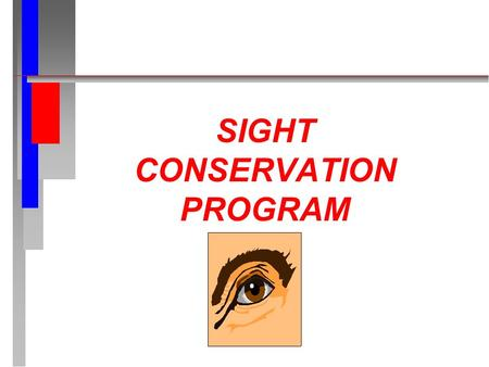 SIGHT CONSERVATION PROGRAM. REFERENCES 29 CFR 1910.133.