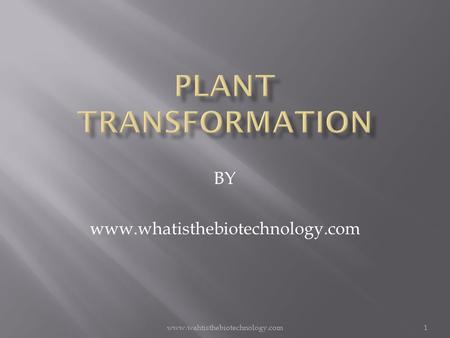 Www.wahtisthebiotechnology.com1 BY www.whatisthebiotechnology.com.