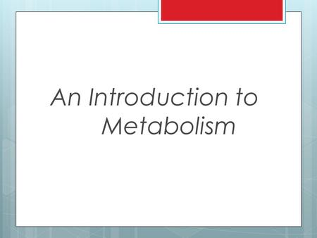 An Introduction to Metabolism. Metabolism/Bioenergetics  Metabolism: The totality of an organism's chemical processes; managing the material and energy.