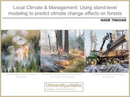 Local Climate & Management: Using stand-level modeling to predict climate change effects on forests WADE TINKHAM Wildfire in Idaho, 2007 © National Geographic.