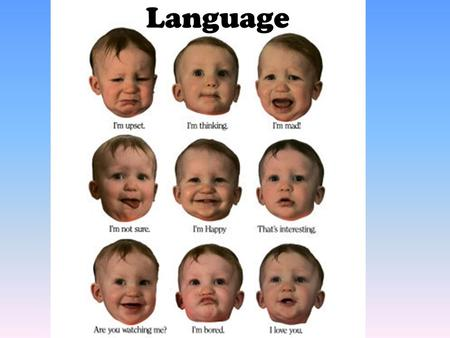 Language. From cooing to communication –In first months, babies are responsive to pitch, intensity and sound of language; people talk to babies w/ more.