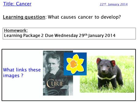 Title: Cancer 22 nd January 2014 Learning question: What causes cancer to develop? Homework: Learning Package 2 Due Wednesday 29 th January 2014 What links.