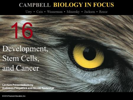 campbell biology in focus urry pdf