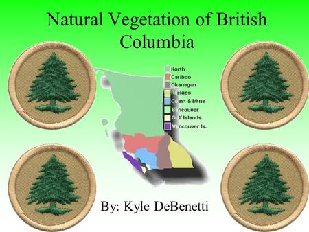 Natural Vegetation of British Columbia By: Kyle DeBenetti.