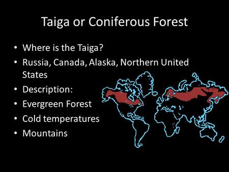 Taiga or Coniferous Forest Where is the Taiga? Russia, Canada, Alaska, Northern United States Description: Evergreen Forest Cold temperatures Mountains.