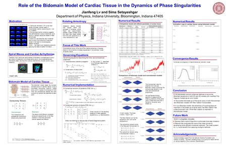 Role of the Bidomain Model of Cardiac Tissue in the Dynamics of Phase Singularities Jianfeng Lv and Sima Setayeshgar Department of Physics, Indiana University,