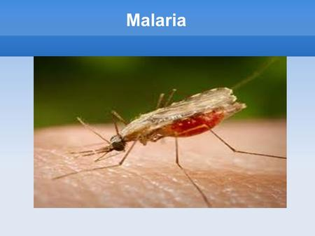 Malaria. Malaria can occur despite taking anti-malarial drugs and symptoms of malaria infection usually occur within 9 to 14 days.