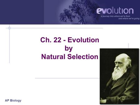 AP Biology 2006-2007 Ch. 22 - Evolution by Natural Selection.