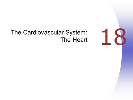18 The Cardiovascular System: The Heart. Heart Anatomy  Approximately the size of your fist  Location  Superior surface of diaphragm  Left of the.