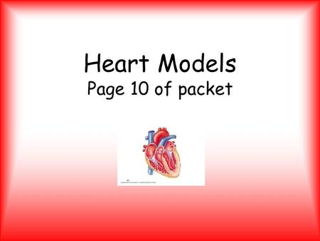 Heart Models Page 10 of packet. External Heart – Anterior HEART CHAMBERS Right Atrium Right Ventricle Apex Left Atrium Left Ventricle.
