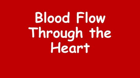 Blood Flow Through the Heart. Right Lung Left Lung.