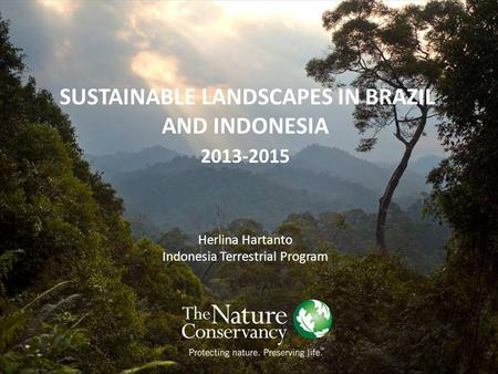 SUSTAINABLE LANDSCAPES IN BRAZIL AND INDONESIA 2013-2015 Herlina Hartanto Indonesia Terrestrial Program.
