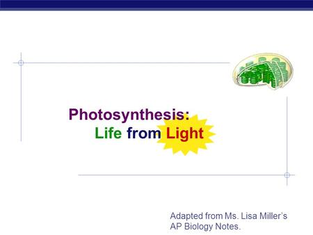 AP Biology Photosynthesis: Life from Light Adapted from Ms. Lisa Miller's AP Biology Notes.