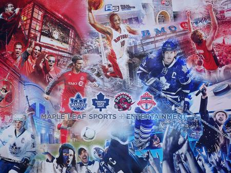 Maple Leaf Sports and Entertainment Economic Scan SWOT Competitor Forces Marketing Position Strategies Objectives Target Market.