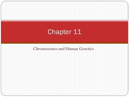 Chromosomes and Human Genetics Chapter 11. Karyotyping Separating chromosomes for an individual The human chromosomes have been karyotyped to see what.