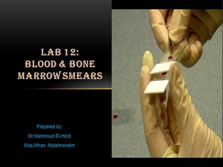 laB 12: Blood & Bone marrow smears