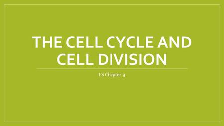 THE CELL CYCLE AND CELL DIVISION LS Chapter 3. The Cell Cycle Every organism begins as a single cell In animals, including humans: sperm fertilizes egg.