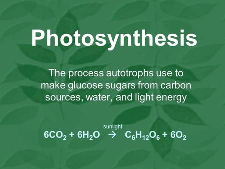Photosynthesis The process autotrophs use to make glucose sugars from carbon sources, water, and light energy 6CO 2 + 6H 2 O  C 6 H 12 O 6 + 6O 2 sunlight.