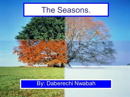 The Seasons. By: Daberechi Nwabah. Types of Seasons Winter Spring Summer Fall.