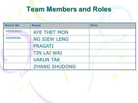 Team Members and Roles AYE THET MON NG SIEW LENG PRAGATI TIN LAI WAI