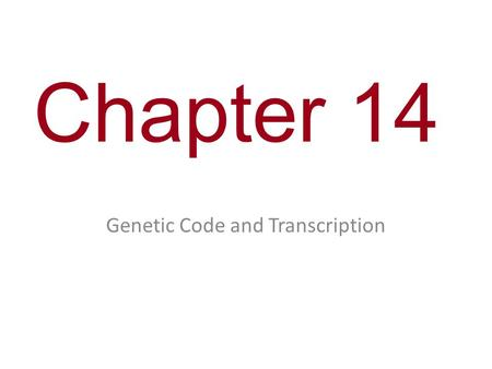 Chapter 14 Genetic Code and Transcription. You Must Know The differences between replication (from chapter 13), transcription and translation and the.