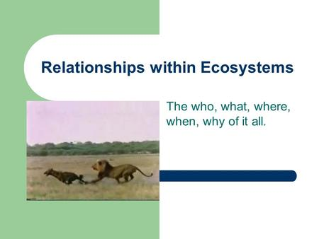 Relationships within Ecosystems The who, what, where, when, why of it all.