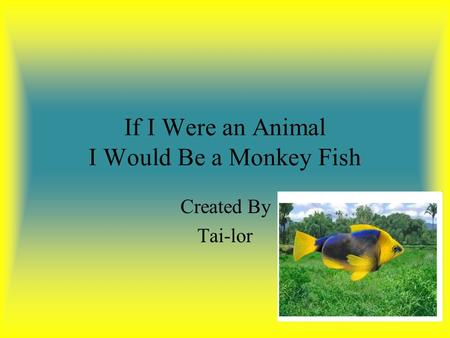 If I Were an Animal I Would Be a Monkey Fish Created By Tai-lor.