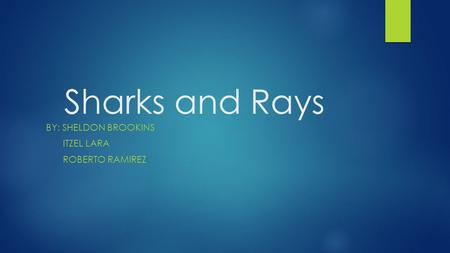 Sharks and Rays BY: SHELDON BROOKINS ITZEL LARA ROBERTO RAMIREZ.