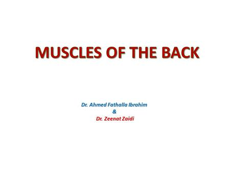 Dr. Ahmed Fathalla Ibrahim & Dr. Zeenat Zaidi. OBJECTIVES At the end of the lecture, students should be able to: the different groups of back muscles.