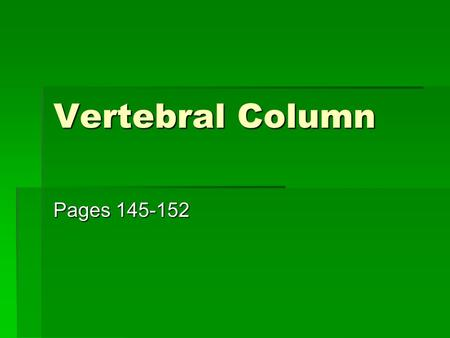 "Vertebral Column Pages 145-152. Vertebral Column  Also called the ""Spine""  Serves as the axial support of the body  Formed from 26 irregular bones."