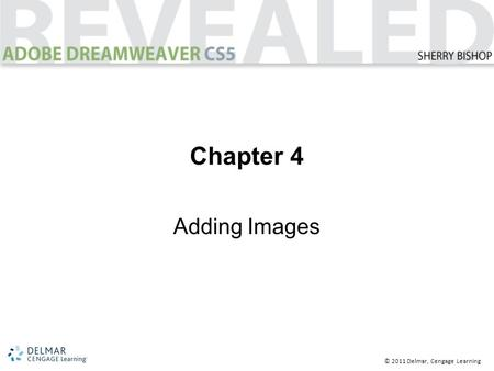 © 2011 Delmar, Cengage Learning Chapter 4 Adding Images.