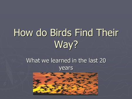 How do Birds Find Their Way? What we learned in the last 20 years.