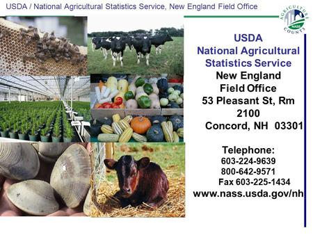 USDA / National Agricultural Statistics Service, New England Field Office USDA National Agricultural Statistics Service New England Field Office 53 Pleasant.