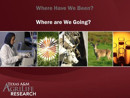 Where Have We Been? Where are We Going?. Grand Challenge Focus Area Strategic Plan Theme.