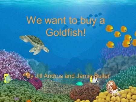 We want to buy a Goldfish! By Jill Andrus and Jamie Buller.