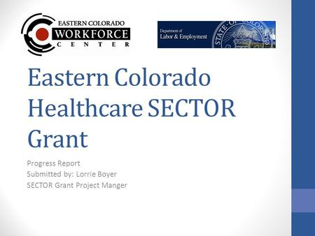 Eastern Colorado Healthcare SECTOR Grant Progress Report Submitted by: Lorrie Boyer SECTOR Grant Project Manger.