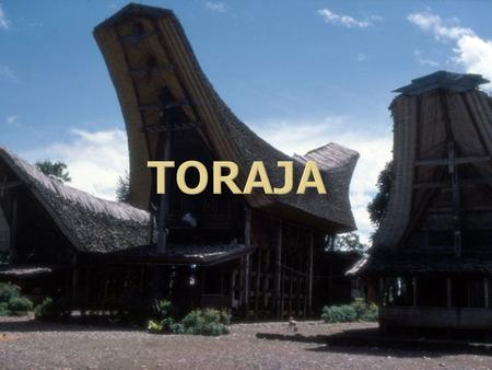 All About Toraja The Toraja are an ethnic group indigenous to a mountainous region of South Sulawesi, Indonesia. Their population is approximately 650,000,