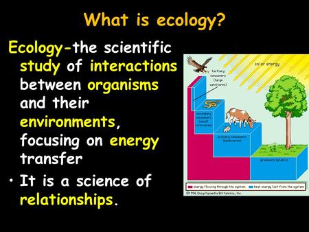 What is ecology? Ecology-the scientific study of interactions between organisms and their environments, focusing on energy transfer It is a science of.