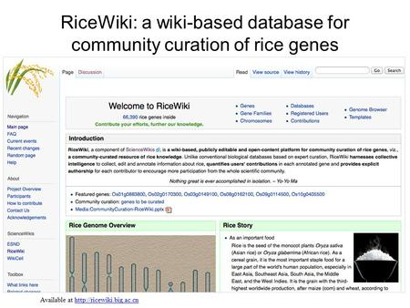 RiceWiki: a wiki-based database for community curation of rice genes Available at