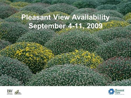Pleasant View Availability September 4-11, 2009. 4.5 Frost Tolerant Fall Colors Dolce Heucheras Purple & Icterina Sage.