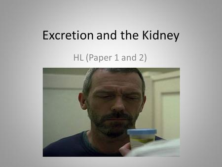 Excretion and the Kidney HL (Paper 1 and 2). Excretion What is excretion? – Elimination of waste from the metabolic processes, to maintain homeostasis.