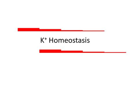 K + Homeostasis. The need: ECF K + concentration is critical for the function of excitable cells However, about 98% of is in K + ICF ICF concentration.