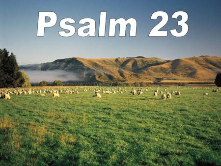 Psalm 23:2 He maketh me to lie down in green pastures: