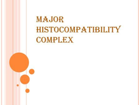 MAJOR HISTOCOMPATIBILITY COMPLEX. MAJOR HISTOCOMPATIBILITY COMPLEX (MHC): Is a segment of the short arm (p) of chromosome 6 containing several genes These.